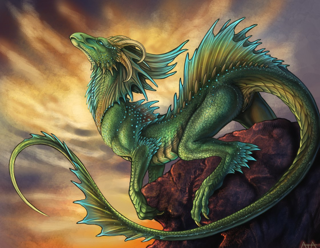 Фурри драконы порно iiff 25 фотография